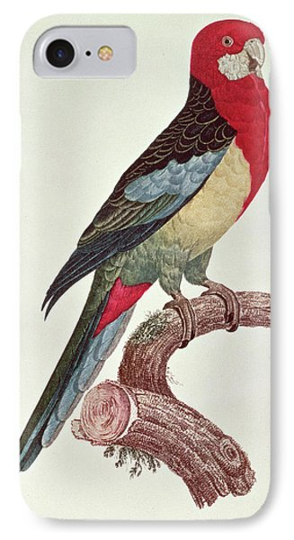 Omnicolored Parakeet IPhone Case by Jacques Barraband