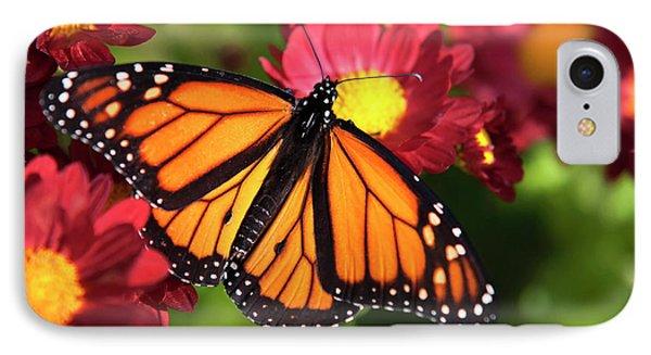 Orange Drift Monarch Butterfly Phone Case by Christina Rollo