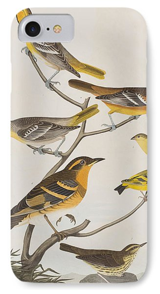 Orioles Thrushes And Goldfinches IPhone 7 Case by John James Audubon