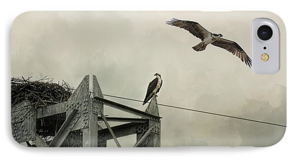 Ospreys At Pickwick IPhone Case by Jai Johnson