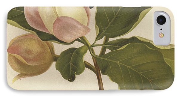 Oyama Magnolia IPhone Case by English School