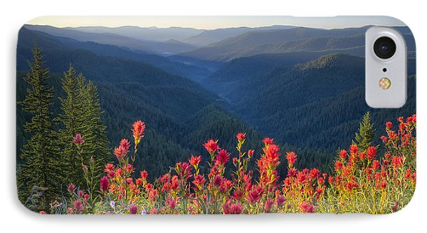 Painted Forest IPhone Case by Idaho Scenic Images Linda Lantzy