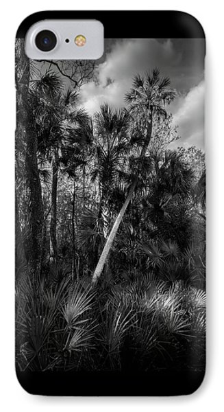 Palms And Palmettos IPhone Case by Marvin Spates