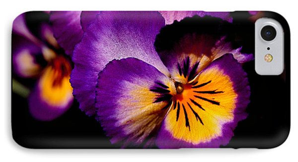 Pansies IPhone Case by Rona Black