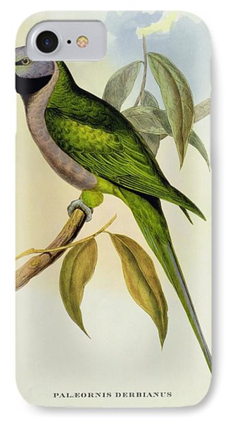 Parakeet IPhone Case by John Gould