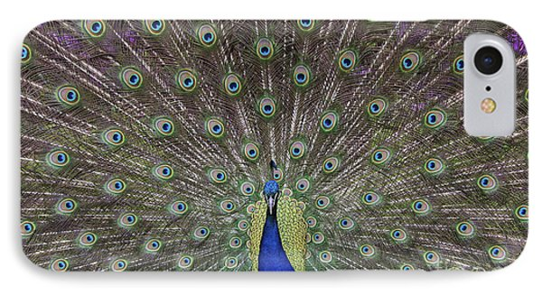 Peacock Display IPhone 7 Case by Tim Gainey