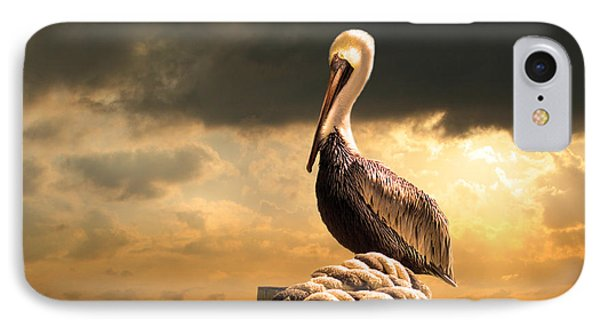 Pelican After A Storm IPhone Case by Mal Bray
