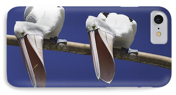 Pelican Burp IPhone Case by Avalon Fine Art Photography