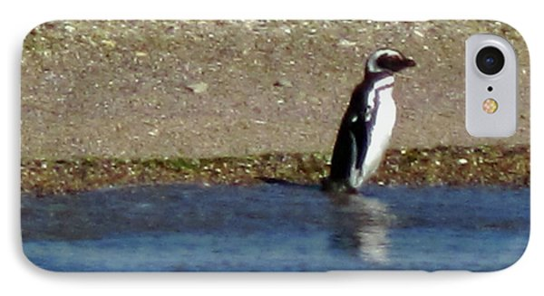 Penguin On The Beach IPhone 7 Case by Sandy Taylor