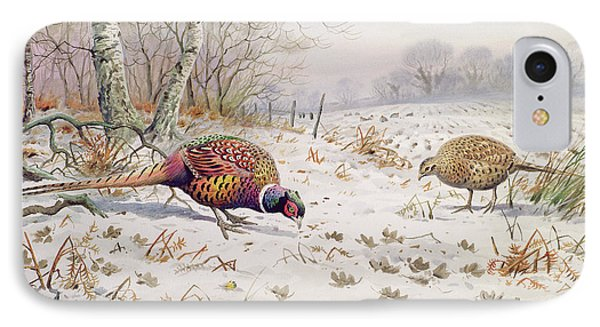 Pheasant And Partridge Eating  IPhone Case by Carl Donner