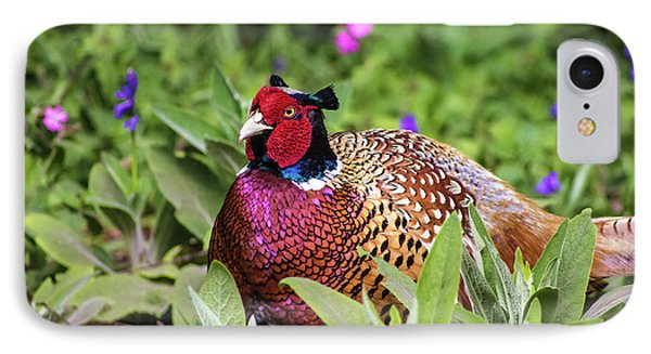Pheasant IPhone 7 Case by Martin Newman