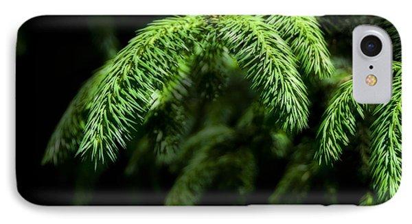 Pine Tree Brunch Phone Case by Svetlana Sewell