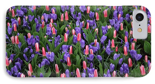 Pink And Purple Tulip Field IPhone Case by Amy Sorvillo