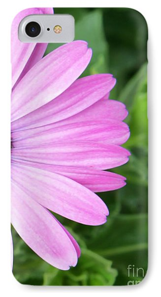 Pink Daisy Phone Case by Sabrina L Ryan