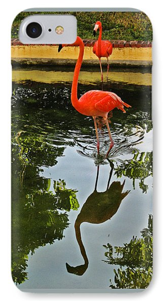 Pink Flamingo. IPhone Case by Andy Za