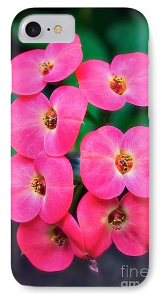 Pink Orchid Crown Of Thorns Phone Case by Sue Melvin