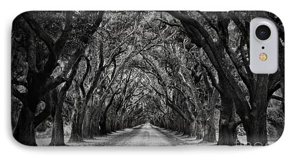 Plantation Oak Alley Phone Case by Perry Webster