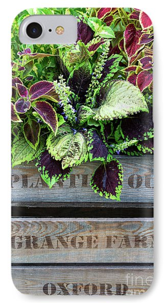 Planting Out IPhone Case by Tim Gainey