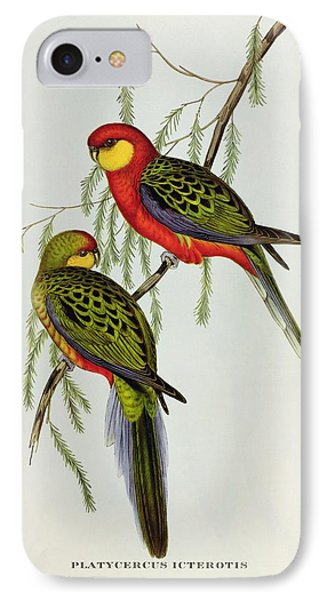 Platycercus Icterotis IPhone Case by John Gould