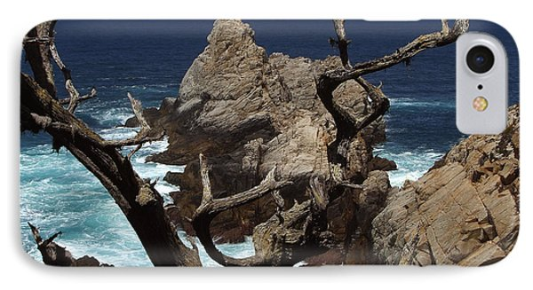 Point Lobos Rocks And Branches IPhone Case by Charlene Mitchell