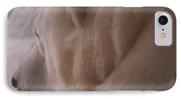 Polar Dream Phone Case by Linda Shafer