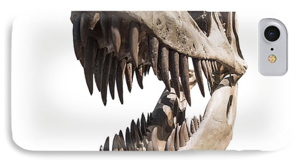 Portrait Of A Dinosaur Skeleton, Isolated On Pure White. IPhone Case by Caio Caldas