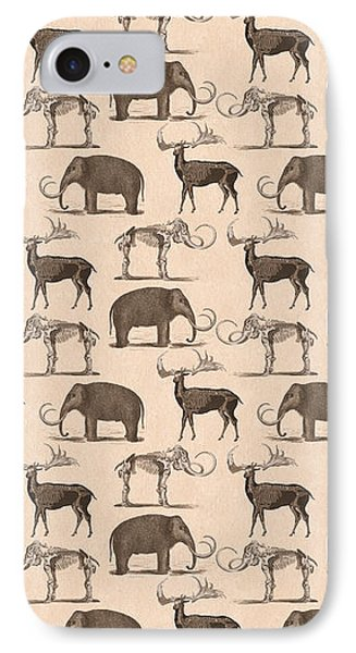 Prehistoric Animals IPhone Case by Antique Images