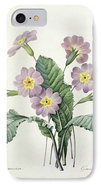 Primrose IPhone Case by Pierre Joseph Redoute