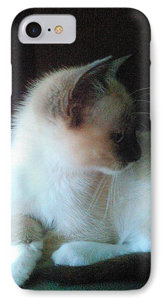 Siamese Kitten Profile IPhone Case by Becky Burt