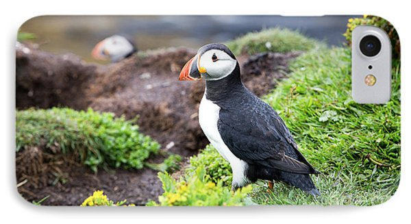 Puffin  IPhone Case by Jane Rix