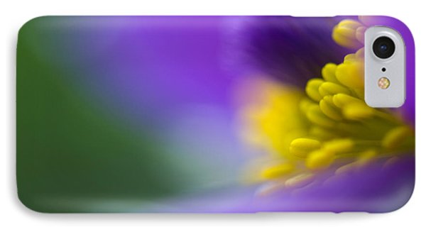 Pulsatilla IPhone Case by Silke Magino