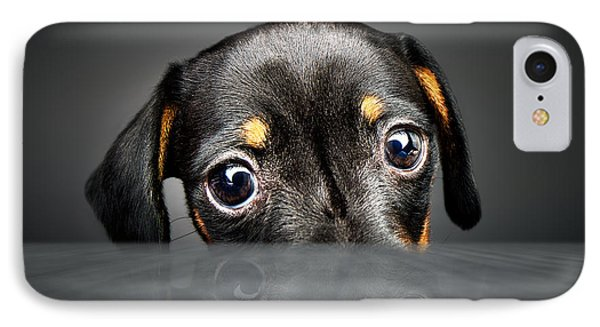Puppy Longing For A Treat IPhone Case by Johan Swanepoel