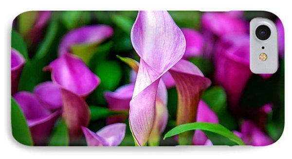 Purple Calla Lilies IPhone Case by Az Jackson