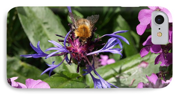 Purple Pollination IPhone Case by Richard Brookes