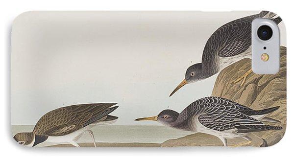 Purple Sandpiper IPhone Case by John James Audubon