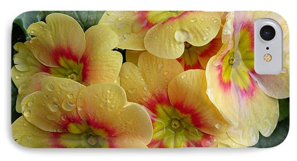 Raindrops On Yellow Flowers Phone Case by Carol Groenen