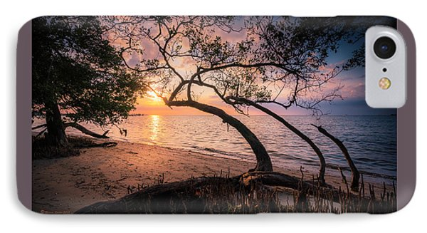 Reaching For The Sun IPhone Case by Marvin Spates