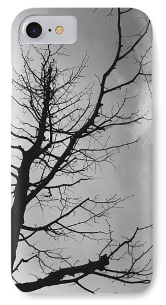 Reaching Out IPhone Case by Linda Woods