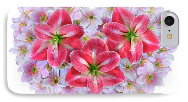 Red Amaryllis IPhone Case by Edwin Verin
