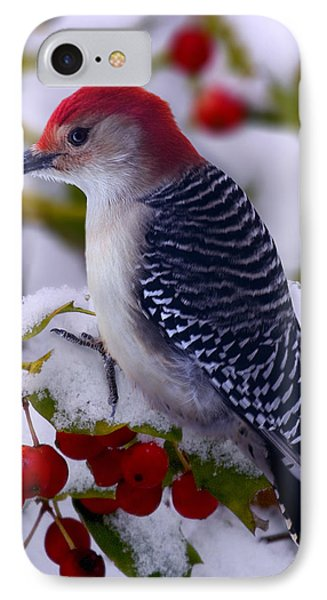 Red Bellied Woodpecker IPhone Case by Ron Jones