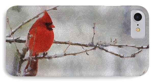 Red Bird Of Winter IPhone 7 Case by Jeff Kolker