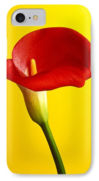 Red Calla Lilly  Phone Case by Garry Gay