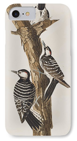 Red-cockaded Woodpecker IPhone 7 Case by John James Audubon