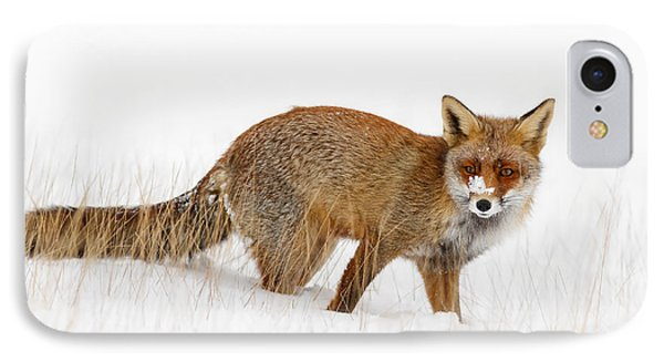 Red Fox In A Snow Covered Scene IPhone Case by Roeselien Raimond