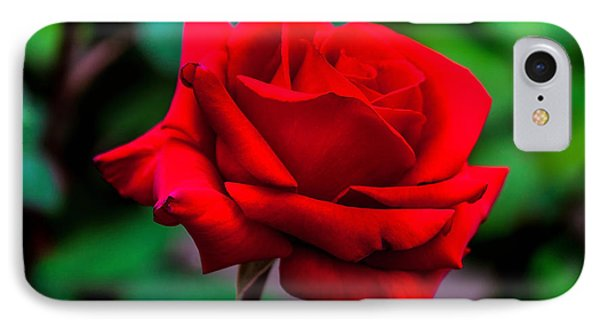 Red Rose 2 IPhone Case by Az Jackson