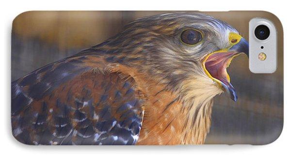 Red Shoulder Hawk Phone Case by Deborah Benoit