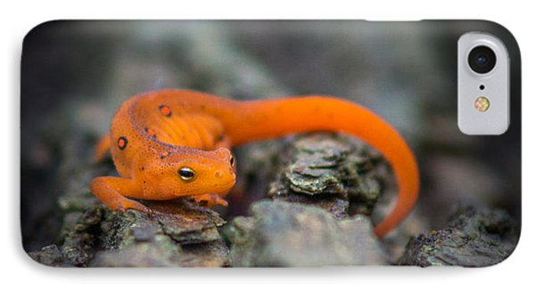 Red Spotted Newt IPhone 7 Case by Chris Bordeleau