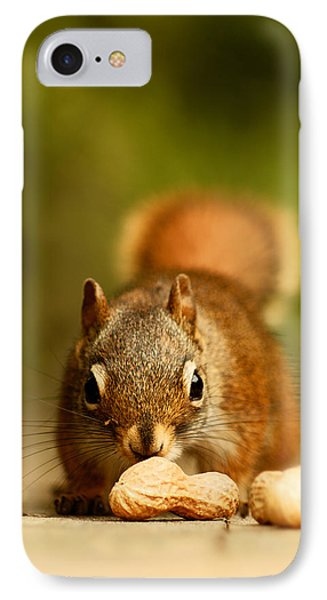 Red Squirrel   IPhone 7 Case by Cale Best