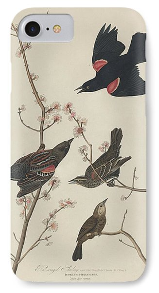 Red-winged Starling IPhone Case by John James Audubon
