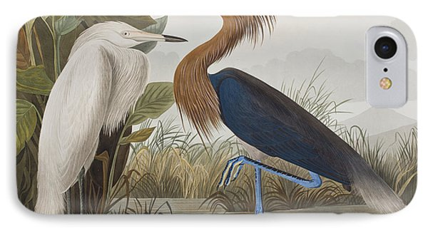 Reddish Egret IPhone 7 Case by John James Audubon